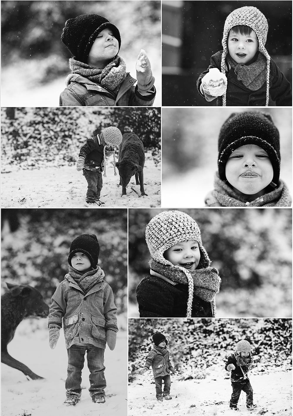 snowcollage2014blog