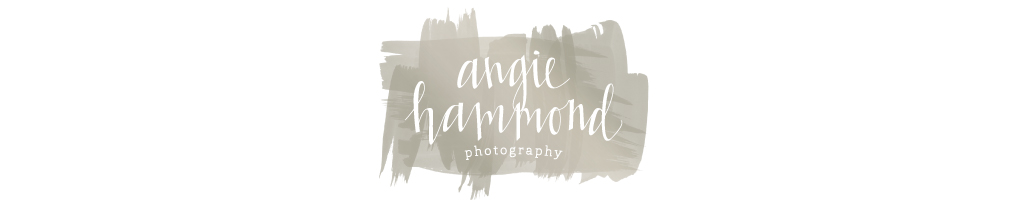 Angie Hammond Photography logo
